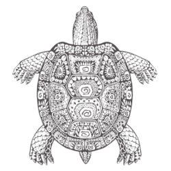 Soham Yoga Rheinmain Mandalas Zum Ausdrucken Und Ausmalen Soham Yoga