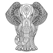 Hatha Yoga Kurs Anmeldung